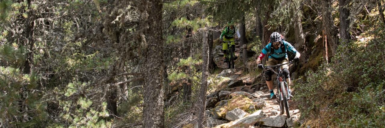 Stelvio natural trail park